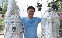Long An: Trồng những chậu hoa lan dendro siêu phẩm, anh nông dân 8X thu tiền tỷ mỗi năm