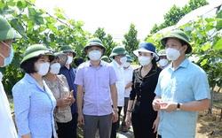 """Bắc Ninh: Phê duyệt Đề án """"Đổi mới, nâng cao hiệu quả hoạt động và phát triển Quỹ Hỗ trợ nông dân"""" giai đoạn 2021-2030"""