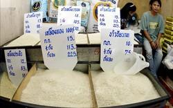 Thái Lan: Giá cước vận tải tăng phi mã, xuất khẩu gạo giảm sâu