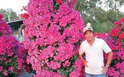 """Sáng tạo để kiếm Tết: Làm chúc kiểng, hoa giấy """"khủng"""" ở miền Tây"""
