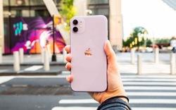 Du Xuân với iPhone 11, lựa chọn không thể sáng suốt hơn