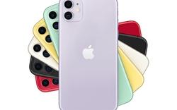 Sốc: iPhone 11 đạt điểm nhiếp ảnh DxOMark gần bằng iPhone 11 Pro Max