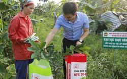 Dạy nghề cho nông dân gắn với hỗ trợ xây dựng mô hình làm giàu