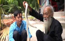 """VIDEO: Lão nông An Giang nuôi """"bạch xà"""" làm thú cưng"""