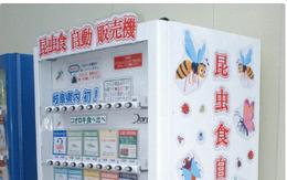Món snack côn trùng kỳ lạ bên trong máy bán hàng tự động ở Nhật Bản