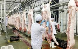 Giá lợn hơi giảm kỷ lục, Phó Thủ tướng yêu cầu làm rõ chi phí từng khâu