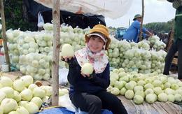 Bà Rịa-Vũng Tàu: Đưa sản phẩm nông nghiệp lên sàn thương mại điện tử