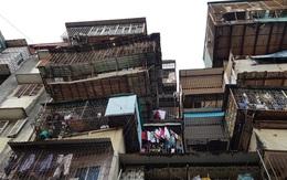 Trông chờ quy định đền bù mới, căn hộ cũ nát được 'thổi' giá tới 50 triệu đồng/m2.
