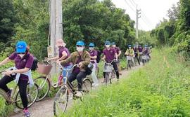 Khơi lại tiềm năng du lịch đường sông TP HCM