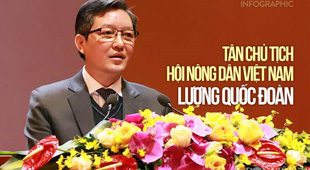 Infographics: Tiểu sử Tân Chủ tịch T.Ư Hội Nông dân Việt Nam Lương Quốc Đoàn