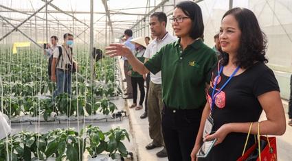 Ảnh: 63 Nông dân Việt Nam xuất sắc hào hứng thăm nông trường VinEco Hải Phòng