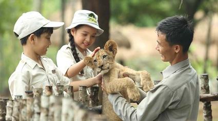 Mê mẩn ngắm sư tử con, hổ... và những góc ảnh dễ thương tại vườn thú bán hoang dã Phú Quốc