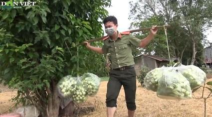 Công an An Giang thu mua 30 tấn nông sản của nông dân gửi tặng TP.HCM