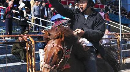 """Hội đua ngựa Báo NTNN-Phú Sơn: Mãn nhãn cuộc đấu """"siêu cúp"""""""