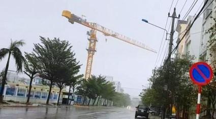 Tháp cẩu quay như chong chóng trong bão ở Bình Định: Bình thường?!