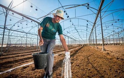 """Công nghệ nông nghiệp Israel giúp nông dân Việt Nam và Đông Nam Á """"đổi đời"""""""