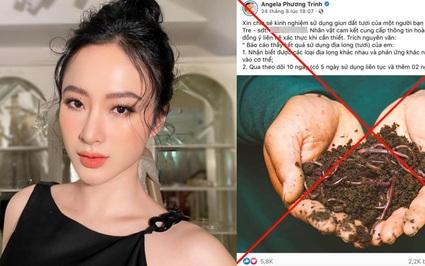 """Tiếp tục đăng tải """"lợi ích của giun đất"""" trong việc chữa trị ung thư, Angela Phương Trinh liệu có bị phạt?"""