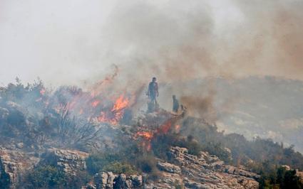 """Syria xử tử 24 người vì đốt rừng, gọi đây là hành động """"khủng bố"""""""