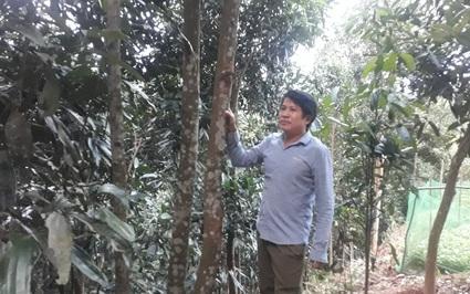 """Lào Cai: Nông dân Việt Nam xuất sắc 2021 là người trồng bạt ngàn thứ cây """"sờ là ra"""" nhà lầu, xe hơi"""