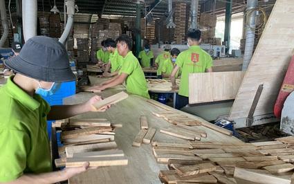Mỹ chi tới 8,2 tỷ USD mua nông sản của Việt Nam, mặt hàng nào mua nhiều nhất?