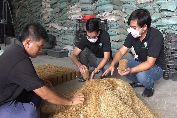 Đồng Nai: 2 anh thạc sỹ và 1 chàng kỹ sư rủ nhau bỏ việc về trồng nấm rơm công nghệ cao, lời 90 triệu/tháng