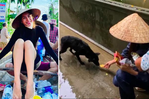HOT showbiz: Xúc động clip Thủy Tiên cứu trợ chú chó bị đói rét, Hoài Linh nhận hơn 7 tỷ đồng