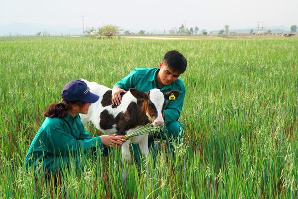 Vinamilk 3 năm liên tiếp là nơi làm việc tốt nhất Việt Nam