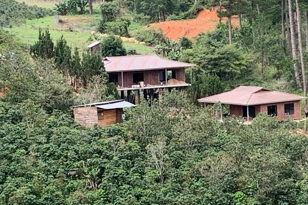Vụ 54 căn nhà trái phép trên đất lâm nghiệp: UBND tỉnh Lâm Đồng chỉ đạo khẩn