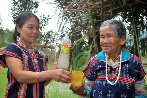 """Kể chuyện làng: Về Quảng Nam xem """"nấu rượu"""" trên cây!"""