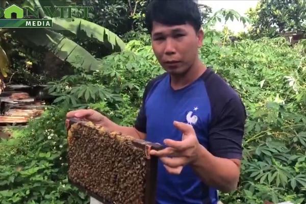 Gia Lai: Chàng trai nông dân làm sản phẩm OCOP gì mà thu nửa tỷ/năm