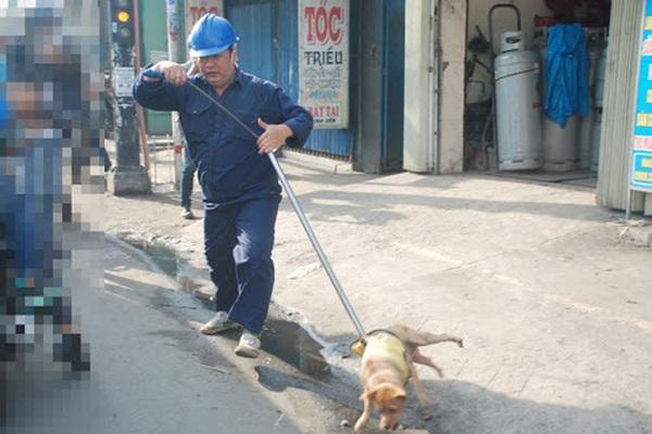 Đứng trước nguy cơ mất việc, 154 nhân viên thú y Hà Nội kêu cứu Bí thư Thành ủy Vương Đình Huệ