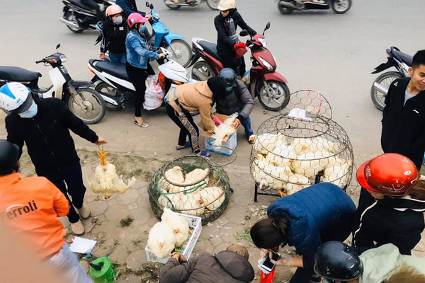 Giá gia cầm hôm nay 30/11: Giá gà thịt công nghiệp tăng 2.000 đồng/kg