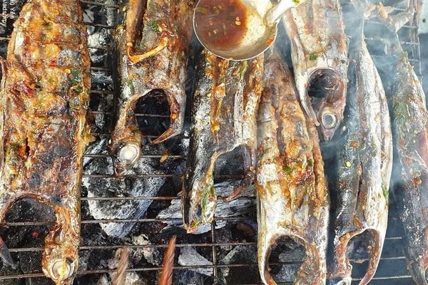 Phú Yên: Cá Ồ là cá gì mà khách lạ đến đây khi ăn muốn an toàn thì bẻ một tí đuôi ăn trước?