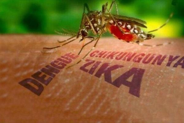 """Đà Nẵng thông tin về trường hợp mắc virus Zika gây bệnh """"đầu nhỏ"""" đầu tiên"""
