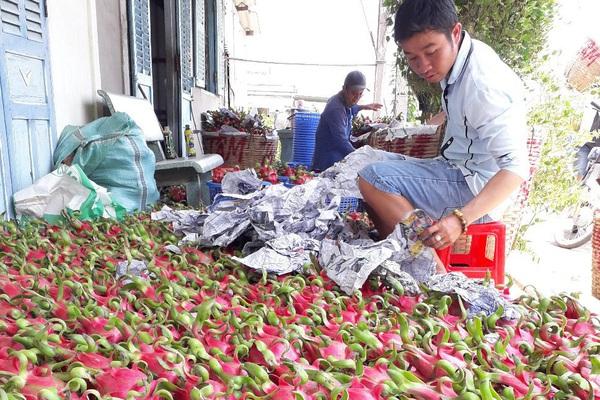 """Phó Thủ tướng Trương Hoà Bình: Mong """"thủ phủ"""" thanh long trở thành nơi đáng sống"""