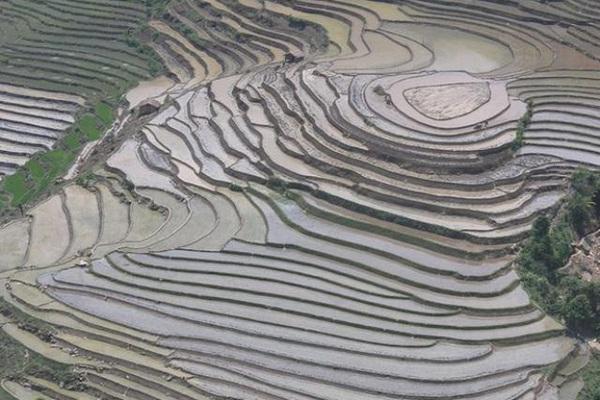 Ruộng bậc thang Sa Pa mùa nước đổ đẹp như tranh thủy mặc