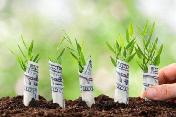 Cơ hội nhận hàng tỷ đồng từ khởi nghiệp nông nghiệp