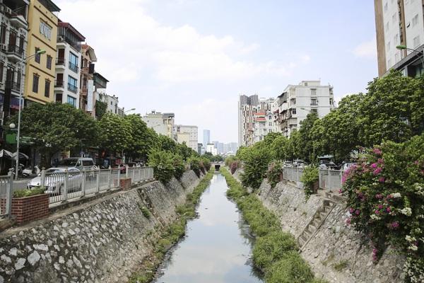 """Hệ thống cây xanh giúp Hà Nội giảm """"hiệu ứng đảo nhiệt đô thị"""" ra sao?"""