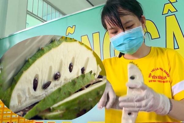 Hậu Giang: Lạ thật, trồng mãng cầu xiêm trái to, bự nhưng tìm đỏ mắt không ra quả chín