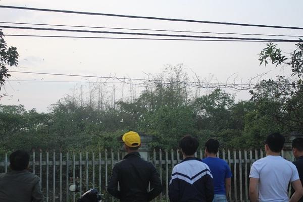 Hà Tĩnh: Báu vật của làng này là thứ gì mà chiều chiều dân ra đứng ngắm