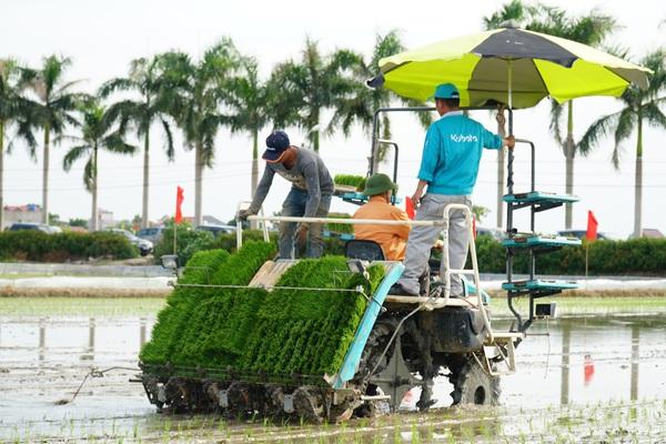 Hải Dương: Lần đầu tiên trình diễn máy cấy lúa trên đồng ruộng
