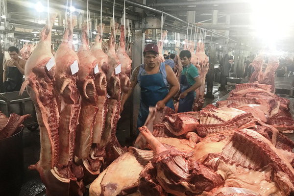 """Giá lợn hơi hôm nay: """"Hạ nhiệt"""" nhờ tung sản phẩm lợn tái đàn sau dịch tả"""