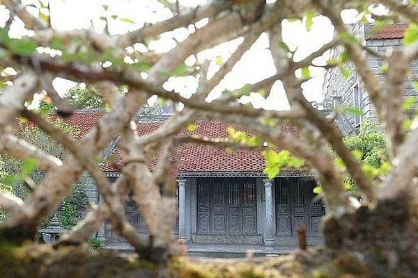 """Ngôi nhà đá 86 tuổi được trả giá chục tỷ đồng mà chủ vẫn """"lắc"""" ở Ninh Bình"""