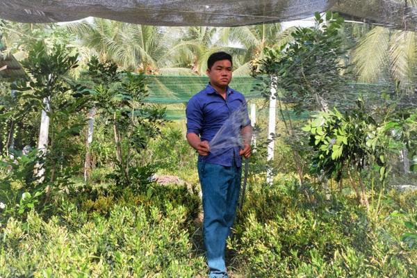 Bến Tre: Trồng 20 loài cây này cắt lá bán đi khắp nơi, nông dân ít sợ hạn mặn mà có tiền quanh năm