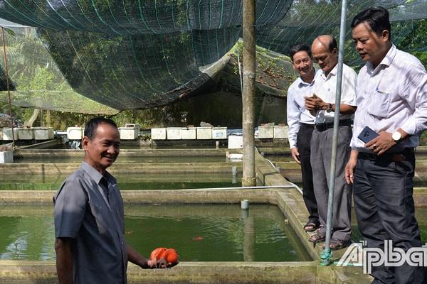 Tiền Giang: Nuôi 30 loài cá bé tý ti mà ông nông dân này thu tiền tỷ
