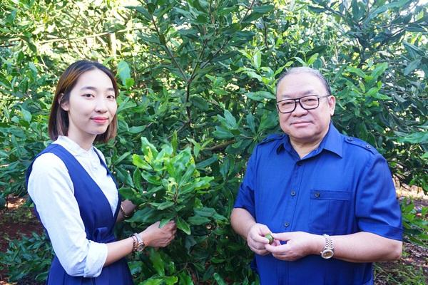 Mô hình liên kết trồng mắc ca ở Đăk Lăk có gì đặc biệt mà Chủ tịch TƯ Hội Nông dân ấn tượng?