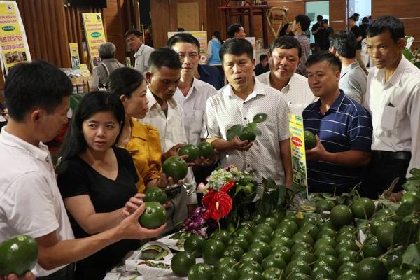 Nông dân háo hức chờ được đối thoại với Thủ tướng  giữa thủ phủ Tây Nguyên