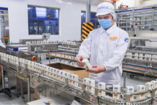 """""""Ông lớn"""" ngành sữa gây bất ngờ với lô hàng xuất khẩu sang Trung Quốc"""