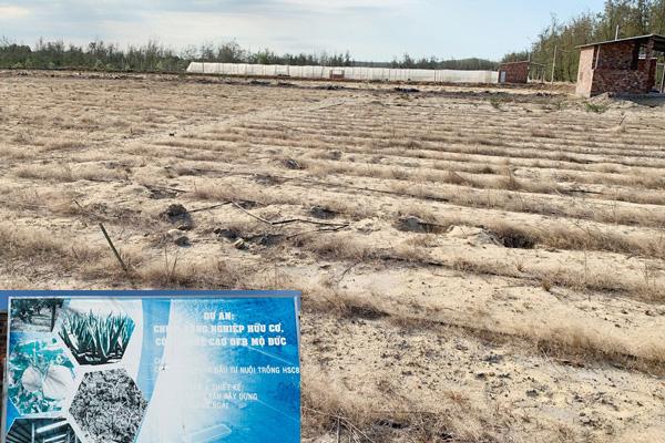 Quảng Ngãi: Điểm mặt những dự án đầu tư nông nghiệp hụt hơi nửa chừng