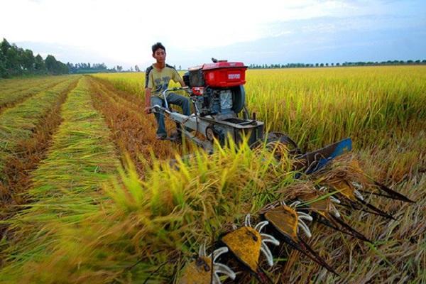 Giá đền bù đất nông nghiệp không thỏa đáng, phải làm sao?